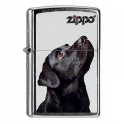 Zippo Black Lab