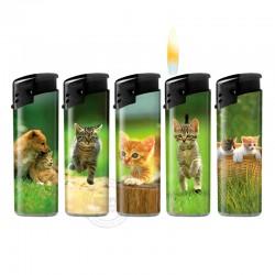 Wegwerpaanstekers kittens